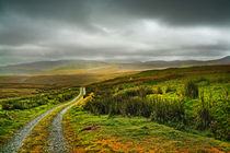 The Road to Glaslyn von Graeme Pettit