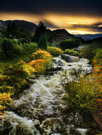 Autumn, and the rains came by Graeme Pettit