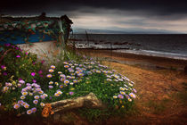 Flowers by the Sea by Graeme Pettit