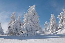 Winterlandschaft von Andreas Levi