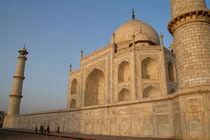 Taj-mahal-inperspective