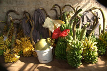 Bunches of Bananas Hanuman Temple by serenityphotography