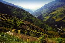 Nepal - Annapurna Himal, Reisfelder by Karel Plechac