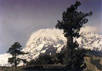 Nepal - Annapurna Himal, Sturmerprobt von Karel Plechac