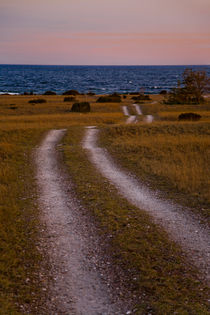 Small road meandering towards the sea on Gotland, Sweden by kbhsphoto