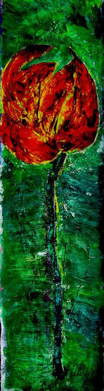 Maledetta Primavera by mo08