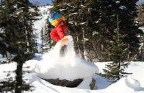 Snowboard #3 by Mikhail Shapaev