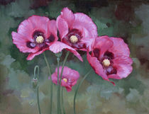 Poppies von Miks Valdbergs