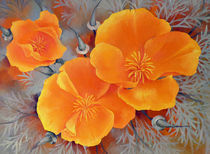California Poppies von Miks Valdbergs