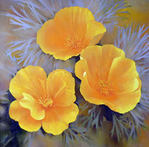 Tree California Poppies von Miks Valdbergs