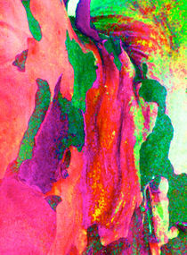 Summer Eucalypt Abstract 15 von Margaret Saheed