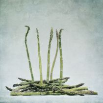 a bunch of asparagus by Priska  Wettstein