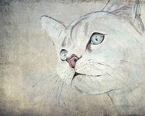 Cat Moments 2- weniger farbintensiv von Annett Tropschug