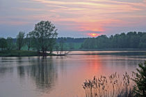 Sunset at Willen Lake von Dan Davidson