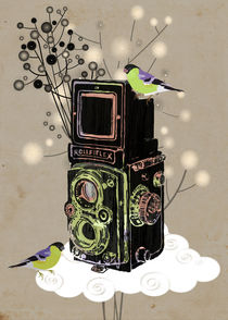 Vintage Camera Rolleiflex by Elisandra Sevenstar