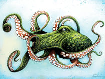 Green Octopus by Danny Silva