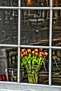 Tulips window von Marco Moscadelli