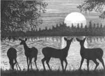 Deer at Dusk by Lawrence Tripoli