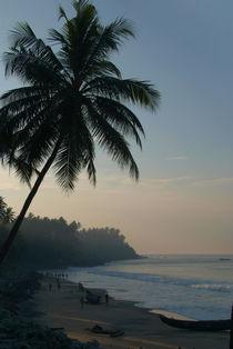 Palm-trees-and-varkala-beach