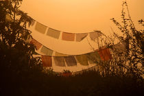 Prayer Flags and Mist Poon Hill von serenityphotography