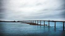 Roscoff (Brittany) - Bridge to Ferry to Ile de Batz by Pier Giorgio  Mariani