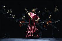 Bailarina-orgullosa-del-flamenco