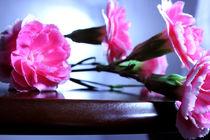 Pink Carnation on Wodden Table by Elizabeth  Wilson