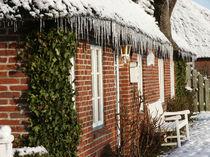 Eisig und doch kuschelig - Icy, yet cuddly by Patti Kafurke