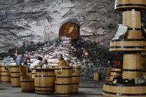 Winery von Paul Iulian Gheorghe