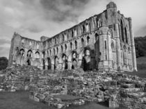 Ruins of Rievaulx Abbey by Sarah Couzens