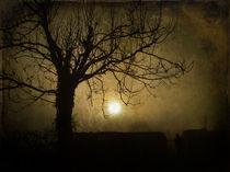 P1010143-fog2-daguerreotype-1-2-shc-final