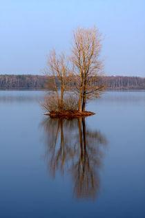 Kleine Insel von Wolfgang Dufner