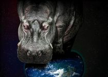 Hippo on earth by gnubier