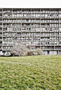 Robin Hood Gardens Social Housing by Gytaute Akstinaite