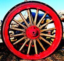 Armed-wheel
