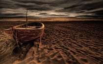 Seeadler IV by photoart-hartmann