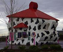 Cowpot mocha stand von Tanya McKean