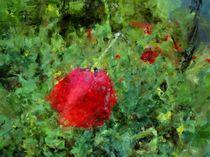 sketchy flower by Georgi Koncaliev