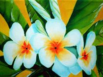 Blütenpracht by Karin Müller
