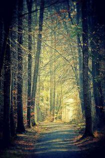 Licht am Ende des Weges by Elke Balzen