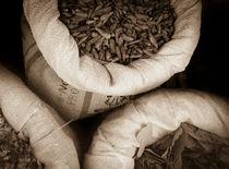 Middle-East spices von Juan Carlos Lopez