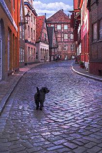 Altstadt-00036srgb