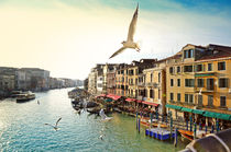 Grand canal, view from Rialto bridge, Venice by Tanja Krstevska