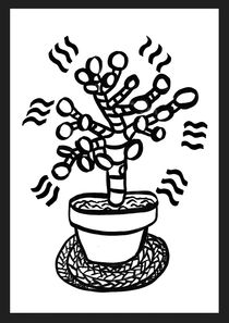Jade Plant by Saskia Pomeroy