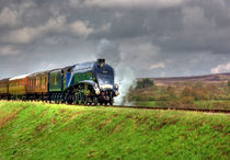 From-goathland-0036