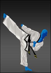 Taekwondo by bear