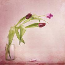 rosa & rot by Priska  Wettstein