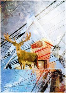 Deer by Juan Manuel Garrido