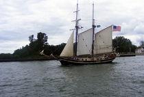 Tall Ship  von Sandra Woods