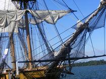 Tall Ship Rigging 2 von Sandra Woods